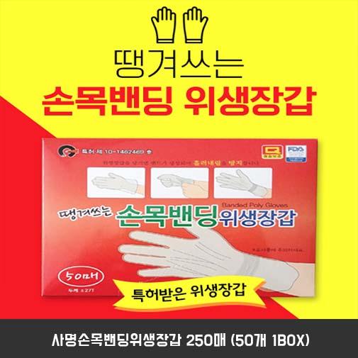 사명손목밴딩위생장갑 2500매 (50개 1BOX)