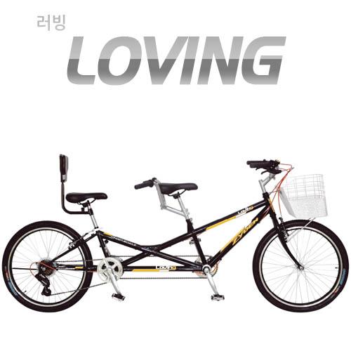 [지오닉스] 2019 ZyDEN 러빙(2인승) 21단