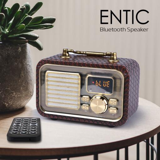 카이스터 Kaister 라디오 엔틱(ENTIC)