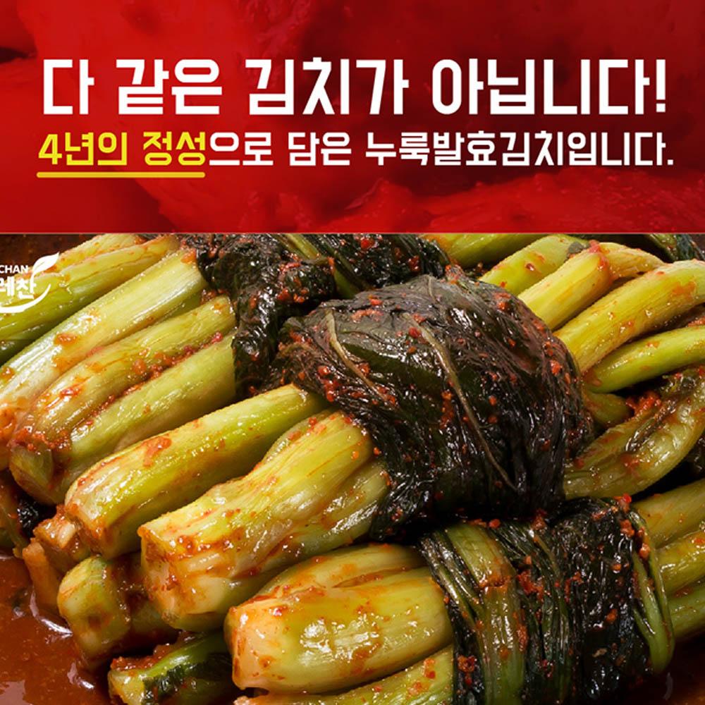 김치명인 뜨레찬 갓김치 10kg