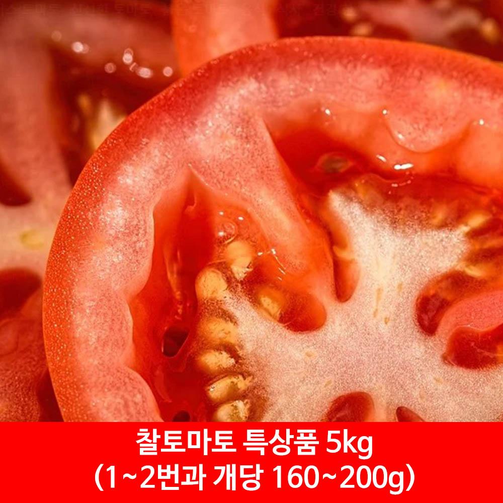 찰토마토 특상품 5kg(1~2번과 개당 160~200g)